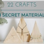 22 Crafts: 1 Secret Material